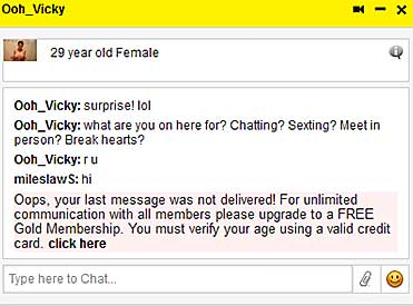 Members-Dating.com fake chat message